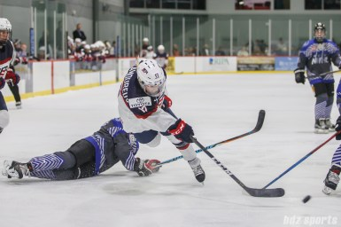 Team USA forward Jocelyne Lamoureux-Davidson (17) takes a shot on goal