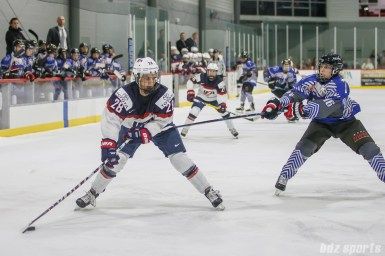 Team USA forward Amanda Kessel (28) possesses the puck while being challenged by Team NWHL forward Alexa Gruschow (16)