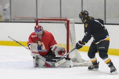 Metropolitan Riveters goalie Katie Fitzgerald (35) makes a save