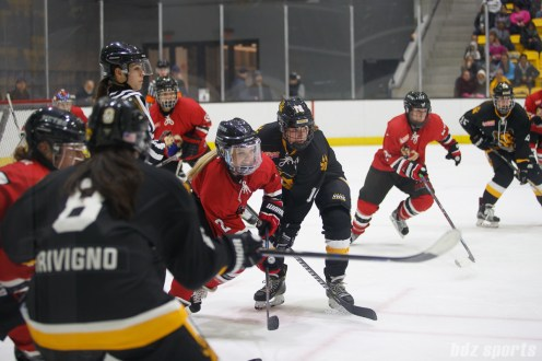 Metropolitan Riveters forward Erika Lawler (2) and Boston Pride forward Jillian Dempsey (14) look for the puck after taking a face off