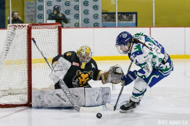 Boston Pride goalie Brittany Ott (29) defends the goal against Connecticut Whale forward Kaycie Anderson (9)