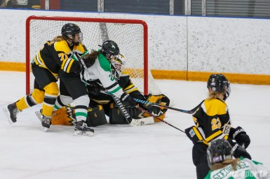 Boston Blades goalie Lauren Dahm (35) with the glove save