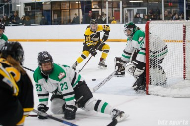 Boston Blades forward Meghan Grieves (17) and Markham Thunder goalie Erica Howe (27)