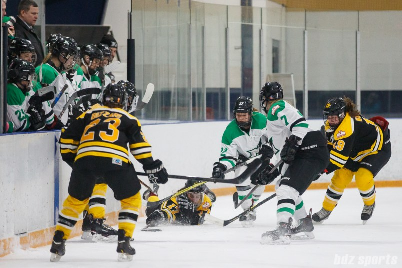Boston Blades forward Meghan Grieves (17) hits the ice to get a stick on the puck