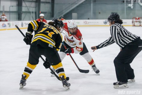 CWHL - Worcester Blades vs Shenzhen KRS Vanke Rays January 5, 2019