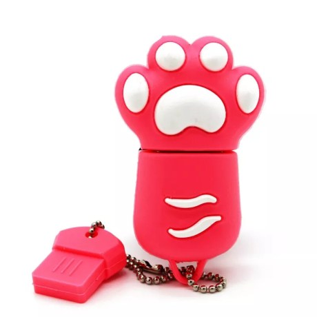Clé USB 3.0 Patte de chat