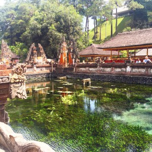 Bali, ubud, Temple, Holy, Water