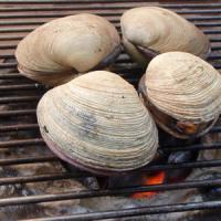 大あさり(ウチムラサキ貝)の七輪焼きレシピ