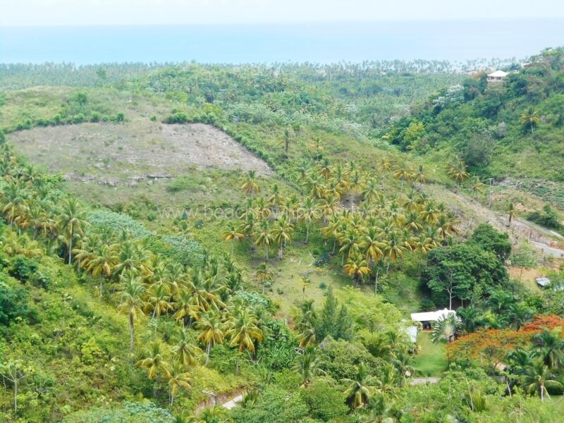 Ocean View land for sale Coson Dominican Republic
