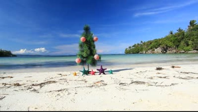stock-footage--christmas-tree-on-caribbean-beach