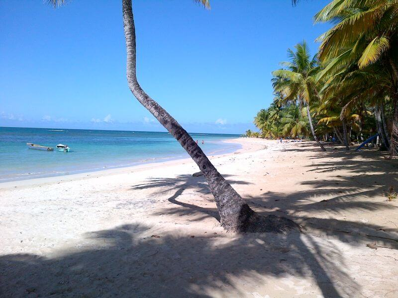 The Other Dominican Republic Las Terrenas