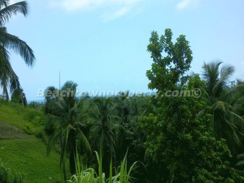 Las Terrenas Ocean View Building Land