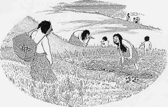 Lekwungen women harvesting camas bulbs on Beacon Hill. Illustration by Victoria graphic artist Gordon Friesen.