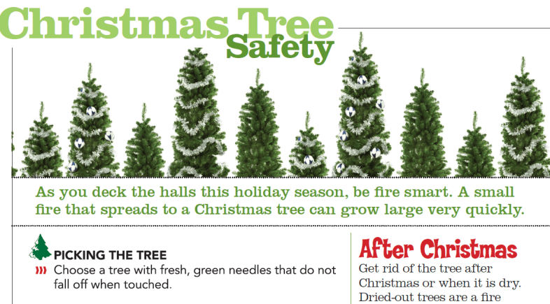 Christmas Tree and Holiday Safety Tips