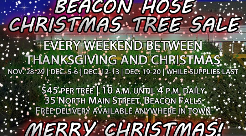 Beacon Hose's Annual Christmas Tree Sale Spans Four Weekends