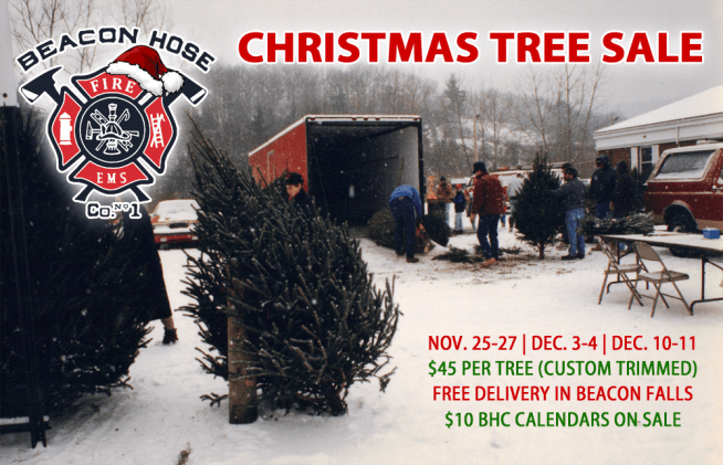 2016-christmas-tree-sale