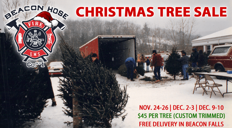Beacon Hose's Christmas Tree Sales Begin Black Friday