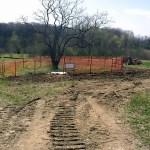 hawthorn_fence