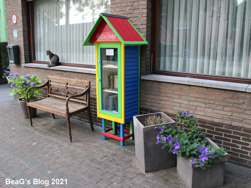Picture of colorful Little Free Library (Gratis Biebje) in front of our home.
