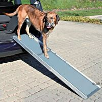 Hunderampe aus Aluminium für den Beagle