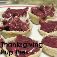 Seasonal Pup Pies - Perfect for Thanksgiving!