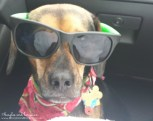 Looking cool