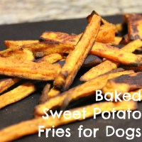 Baked Sweet Potato Fries For Dogs