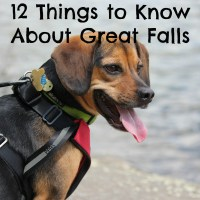 12 Things You Should Know About Dog Friendly Great Falls National Park