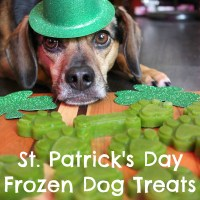 St. Patrick's Day Frozen Dog Treat Recipe