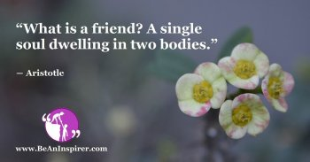 What-is-a-friend-A-single-soul-dwelling-in-two-bodies-Aristotle-Be-An-Inspirer-FI