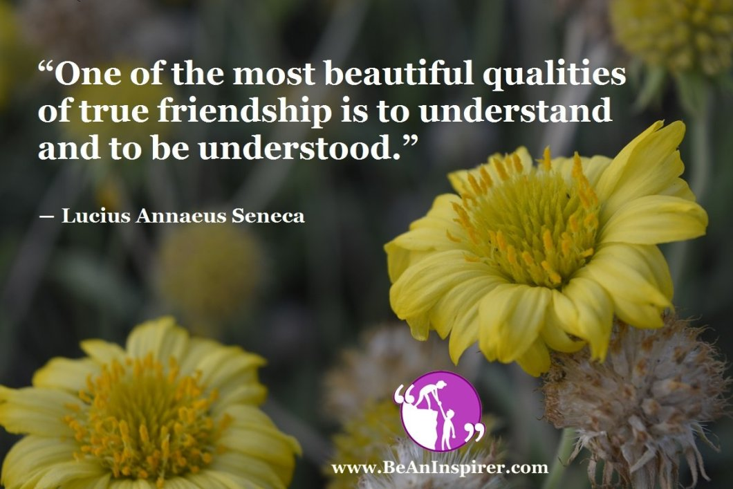 Facts of Ideal Friendship – Thoughts on Friendship