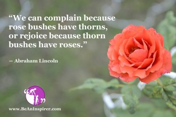 We-can-complain-because-rose-bushes-have-thorns-or-rejoice-because-thorn-bushes-have-roses-Abraham-Lincoln-Positivity-Quote-Be-An-Inspirer