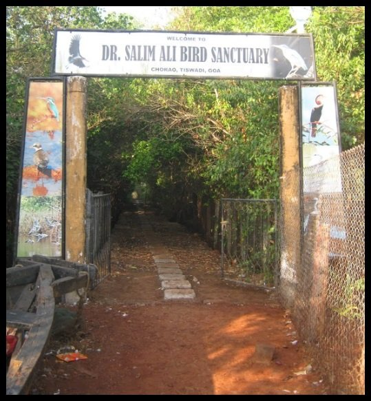 Dr.-Salim-Ali-Bird-Sanctuary-Be-An-Inspirer