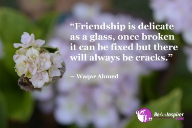 Friendship-is-delicate-as-a-glass-once-broken-it-can-be-fixed-but-there-will-always-be-cracks-Waqar-Ahmed-Friendship-Quotes-Be-An-Inspirer