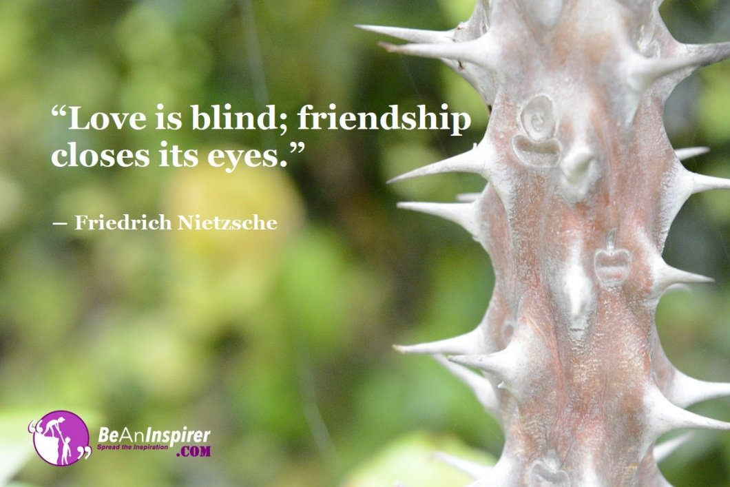 Top 100 Friendship Quotes (with Nature Photographs)