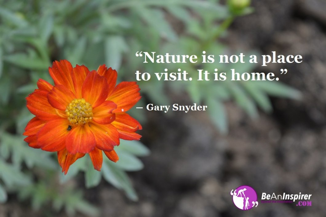 Home Is Where Nature Is – A Tryst With Nature