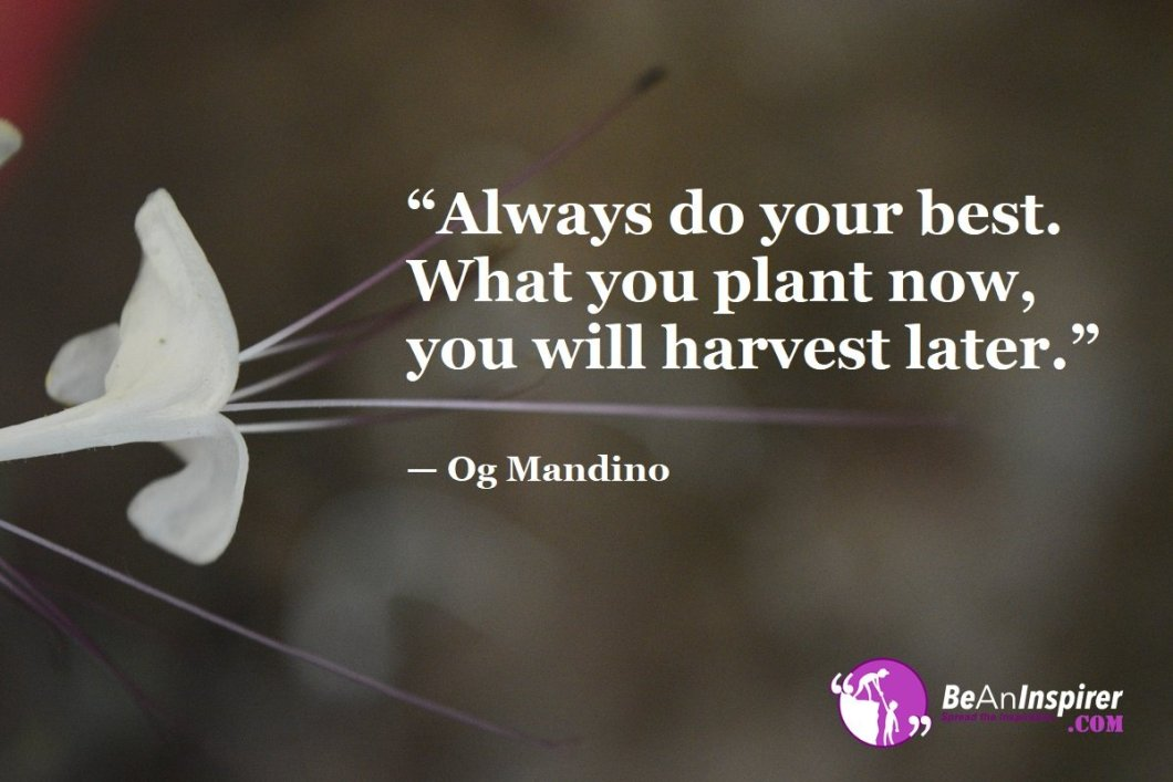 """""""Always do your best. What you plant now, you will harvest later."""" — Og Mandino"""