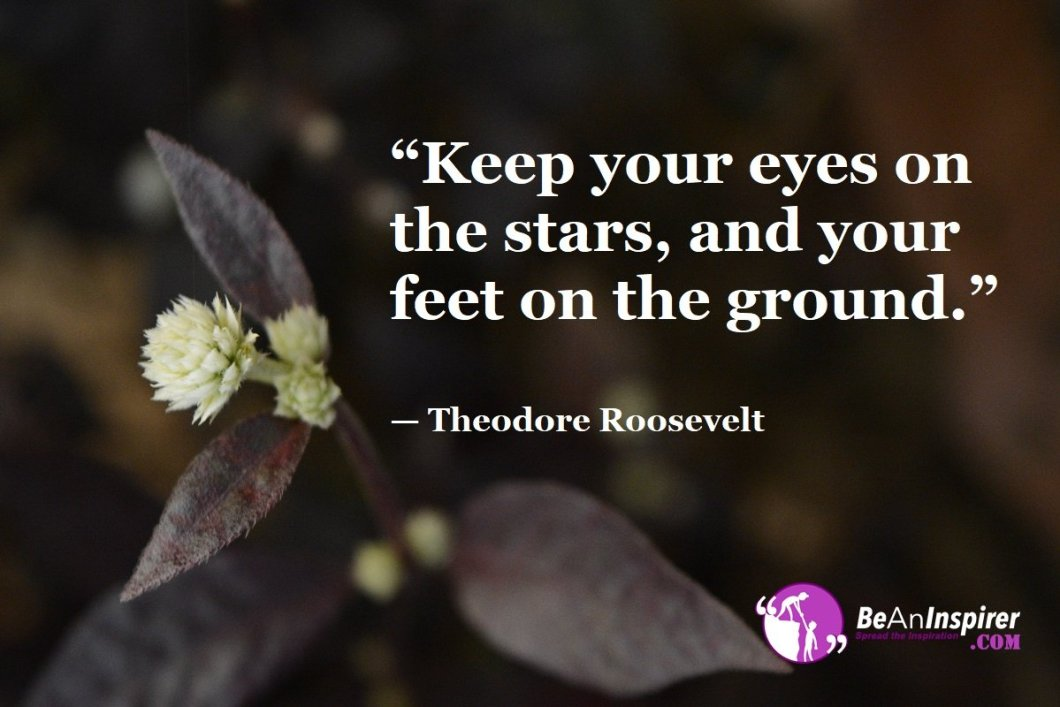 """Keep your eyes on the stars, and your feet on the ground."" — Theodore Roosevelt"