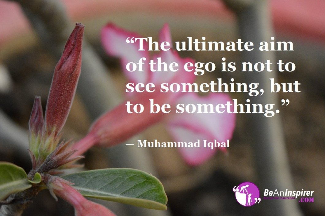 """""""The ultimate aim of the ego is not to see something, but to be something."""" — Muhammad Iqbal"""