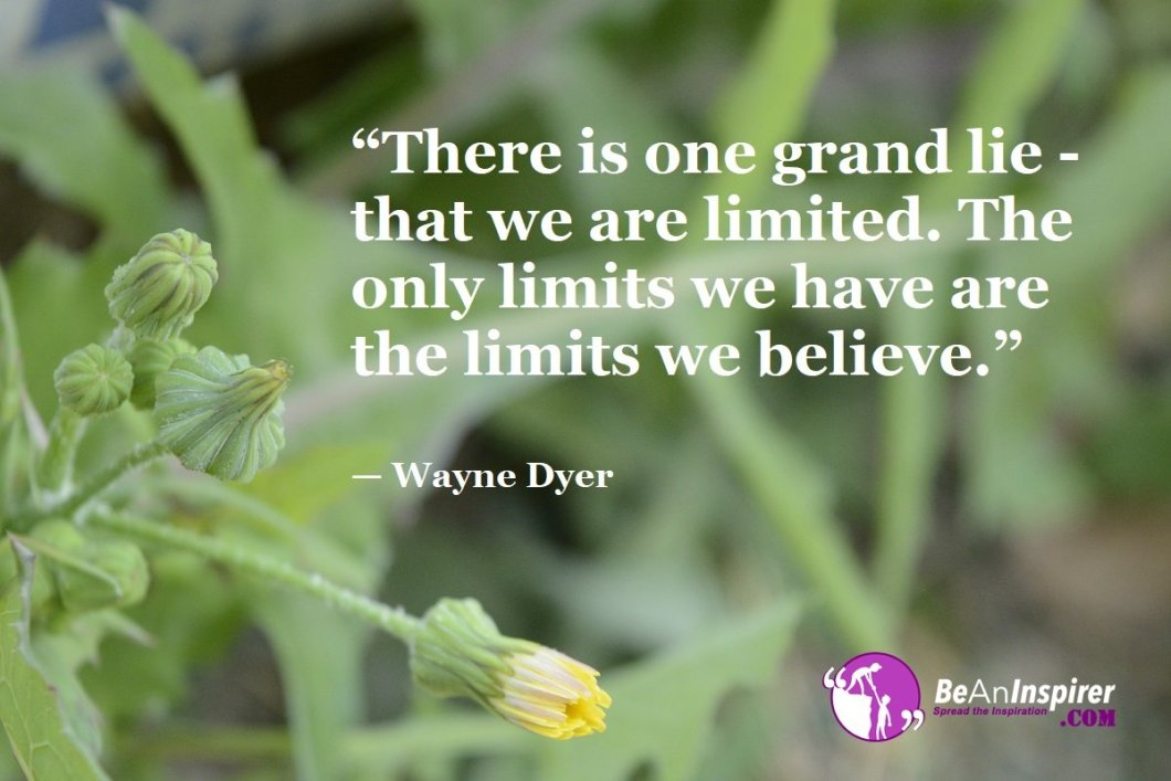 """""""There is one grand lie - that we are limited. The only limits we have are the limits we believe."""" — Wayne Dyer"""