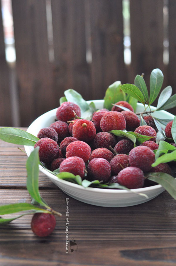 chinese_bayberry_02