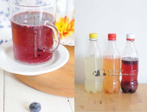 homemade_softdrink_04