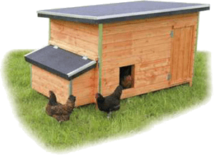 a chicken coop