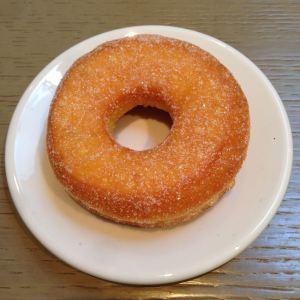 doughnut tokamak