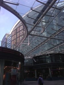 Cardinal Place roof, greenhouse