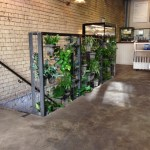 Interior vertical gardening
