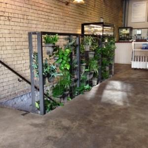 Interior vertical gardening