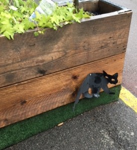 cat in Shepherd's Bush Market