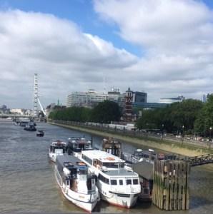 Thames, South bank, London Eye, plastic pollution, Thames21, PLA