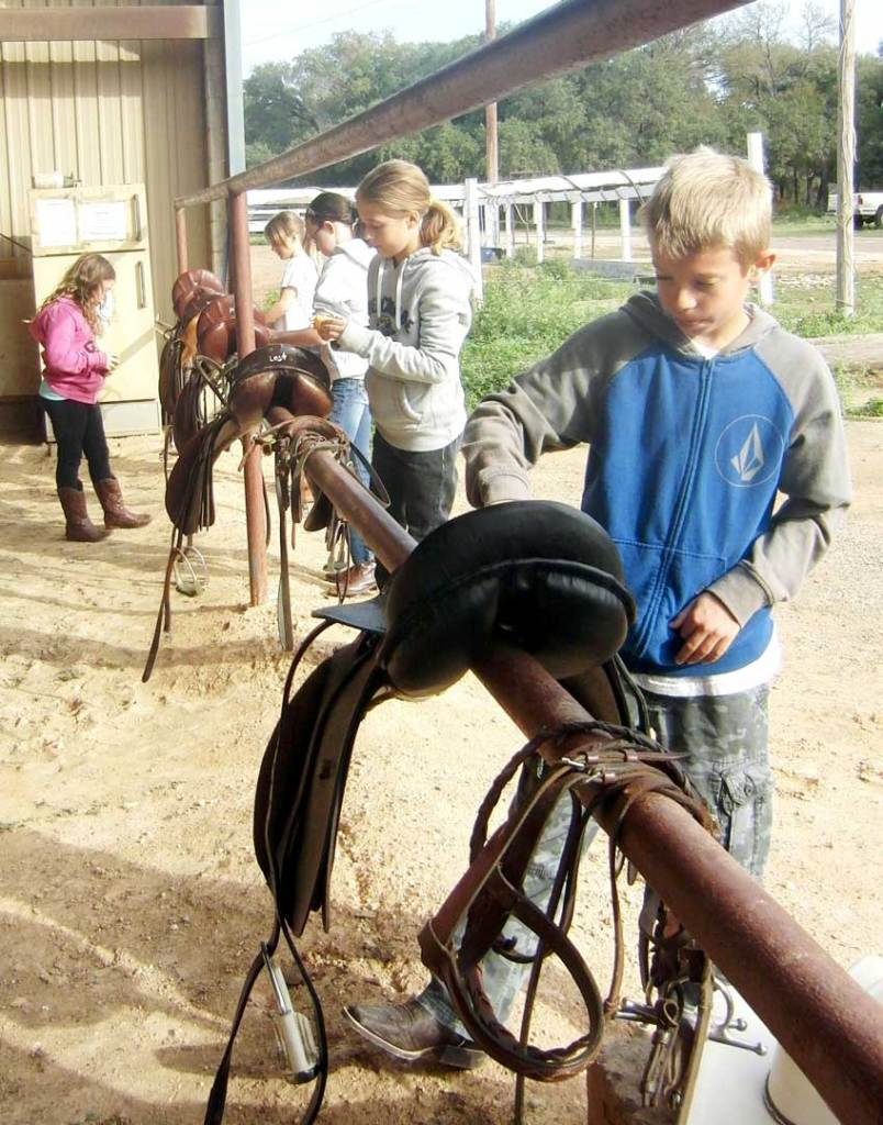 replace-saddle-cleaning-photo-on-horse-program-page